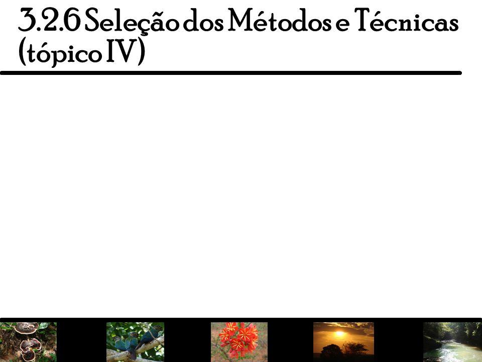 3.2.6 Seleção dos Métodos e Técnicas (tópico IV)