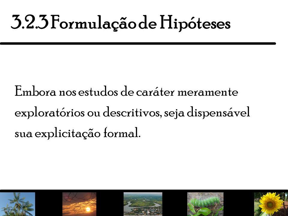 3.2.3 Formulação de Hipóteses