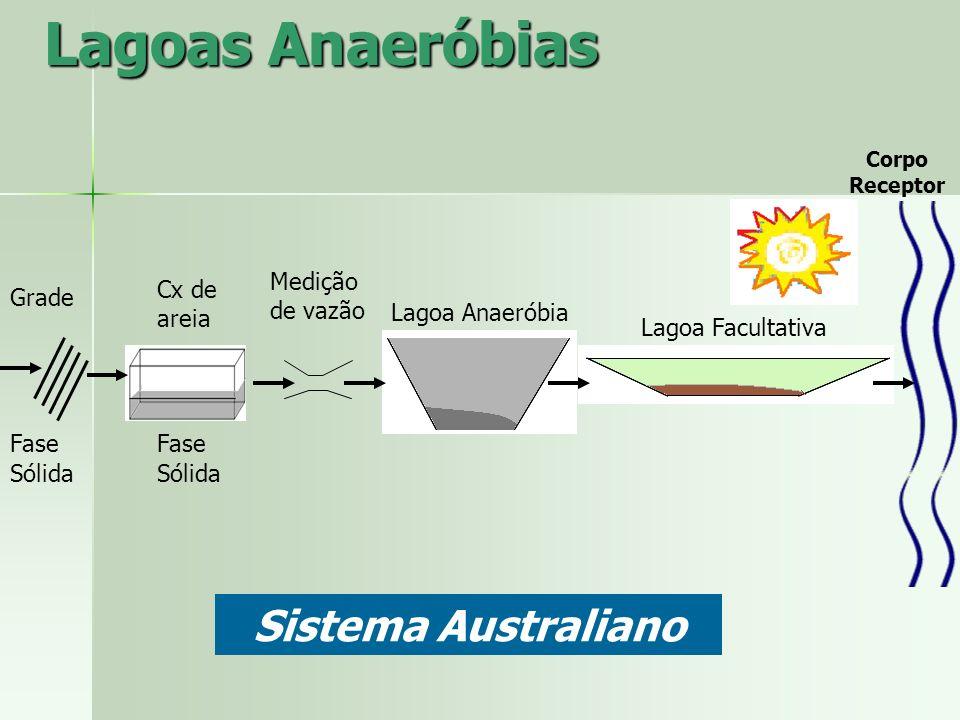 Lagoas Anaeróbias Sistema Australiano Medição de vazão Cx de areia