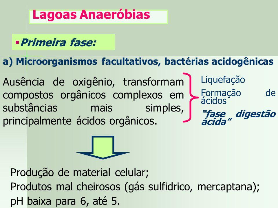 Lagoas Anaeróbias Primeira fase: