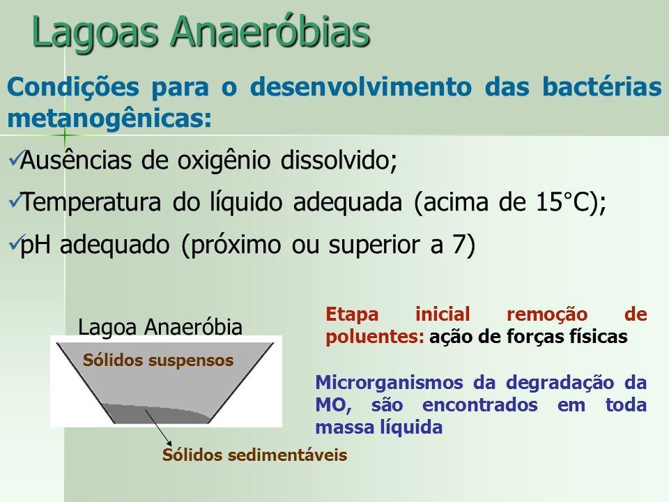 Lagoas Anaeróbias Condições para o desenvolvimento das bactérias metanogênicas: Ausências de oxigênio dissolvido;