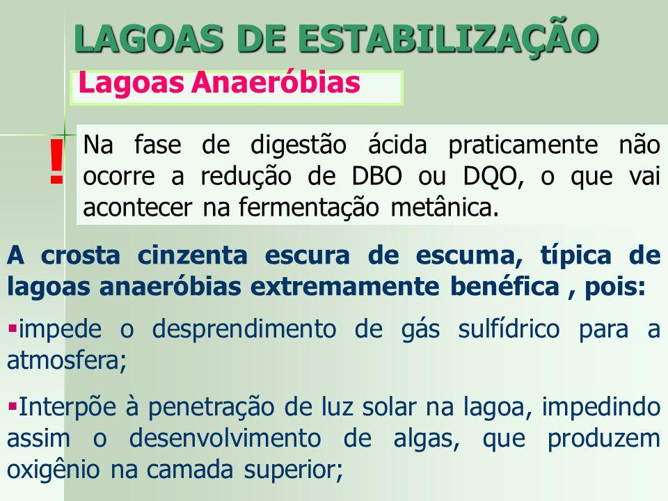 ! LAGOAS DE ESTABILIZAÇÃO Lagoas Anaeróbias