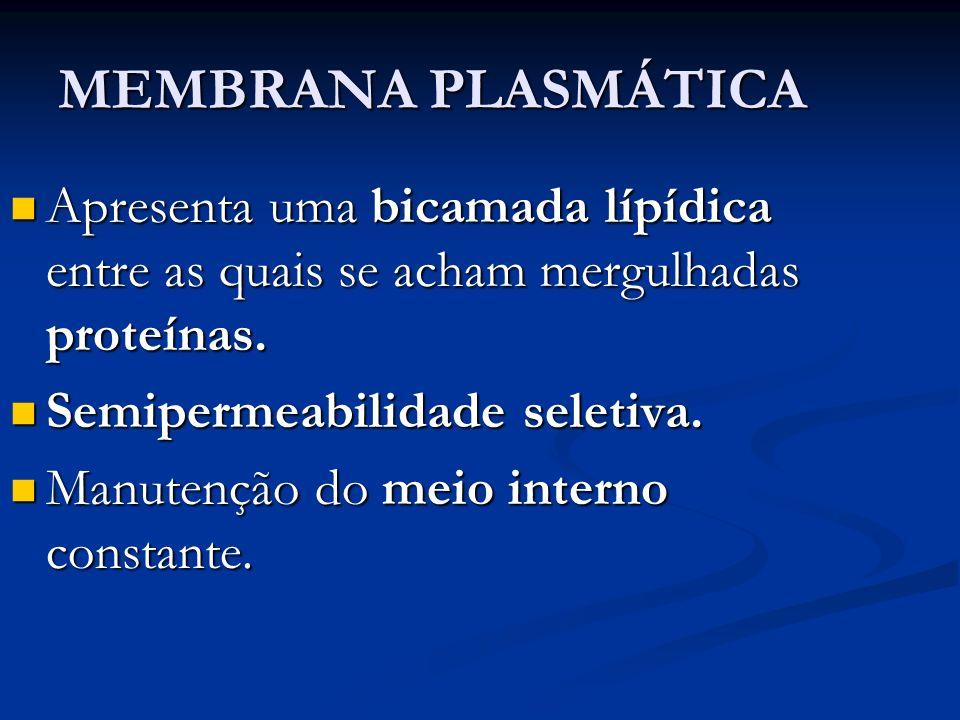MEMBRANA PLASMÁTICA Apresenta uma bicamada lípídica entre as quais se acham mergulhadas proteínas. Semipermeabilidade seletiva.