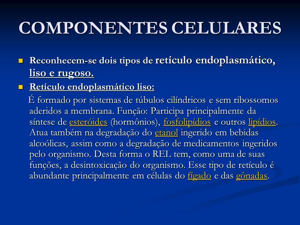 COMPONENTES CELULARES