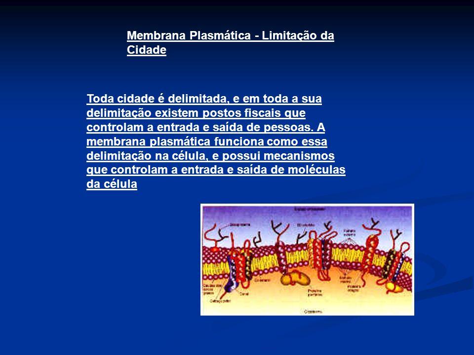 Membrana Plasmática - Limitação da Cidade