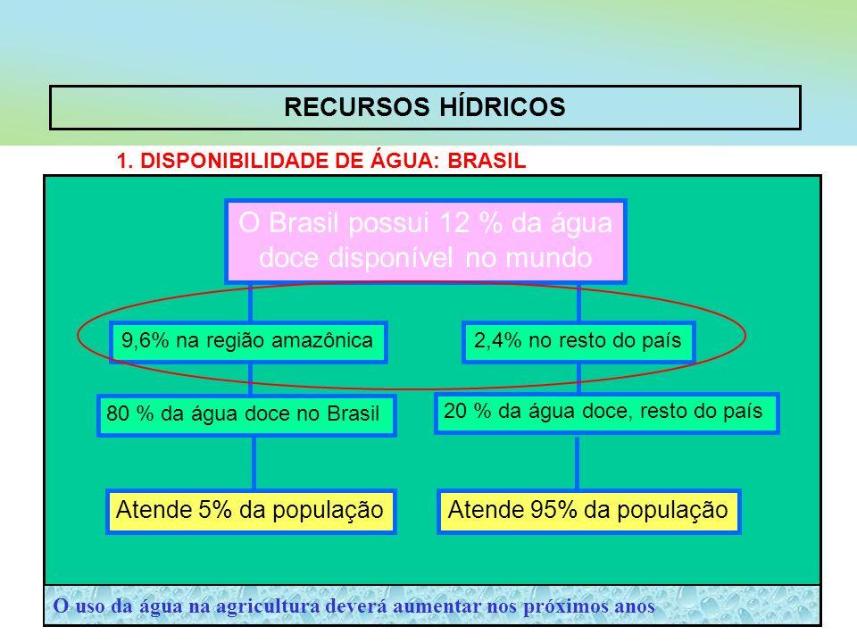 O Brasil possui 12 % da água doce disponível no mundo