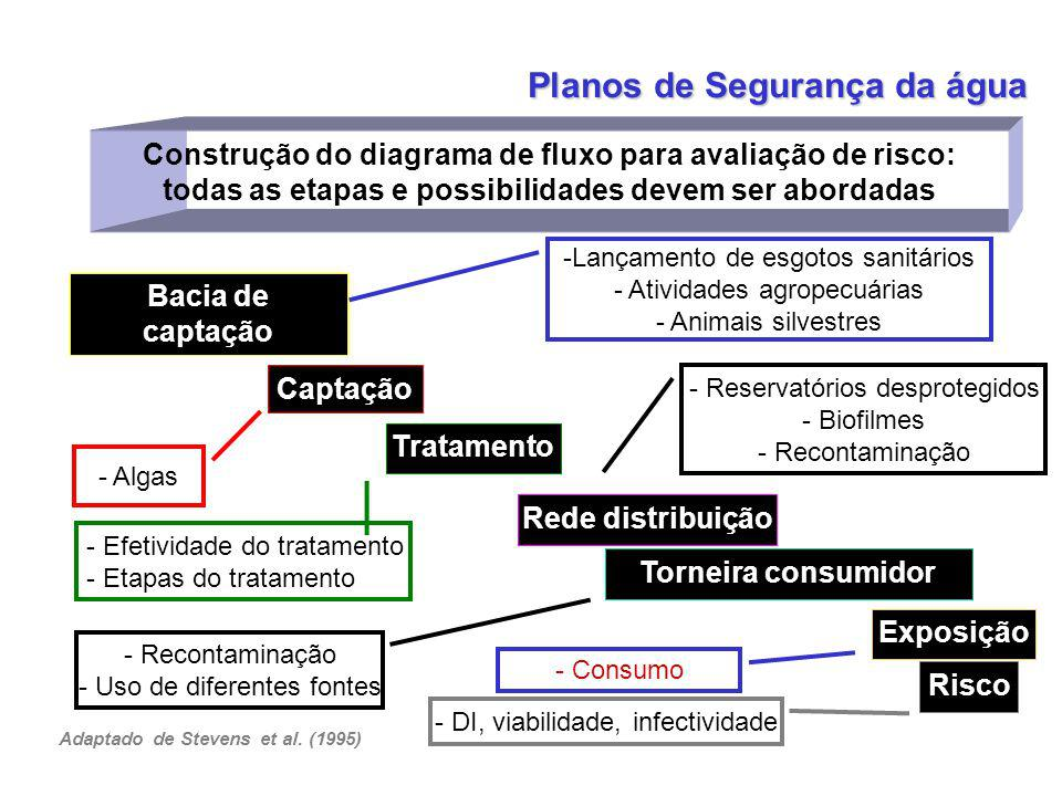 Adaptado de Stevens et al. (1995)
