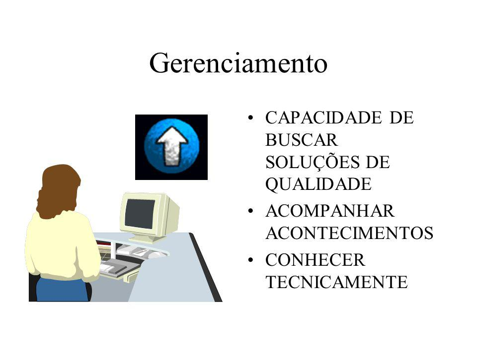 Gerenciamento CAPACIDADE DE BUSCAR SOLUÇÕES DE QUALIDADE