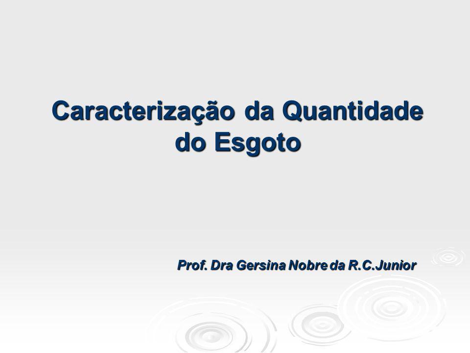 Caracterização da Quantidade Prof. Dra Gersina Nobre da R.C.Junior