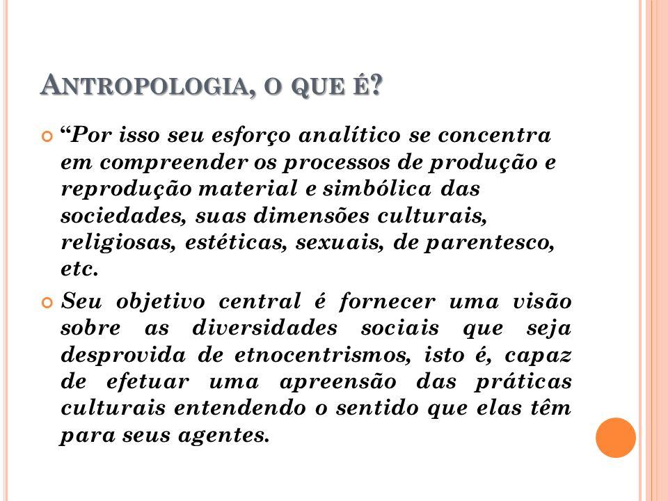 Antropologia, o que é