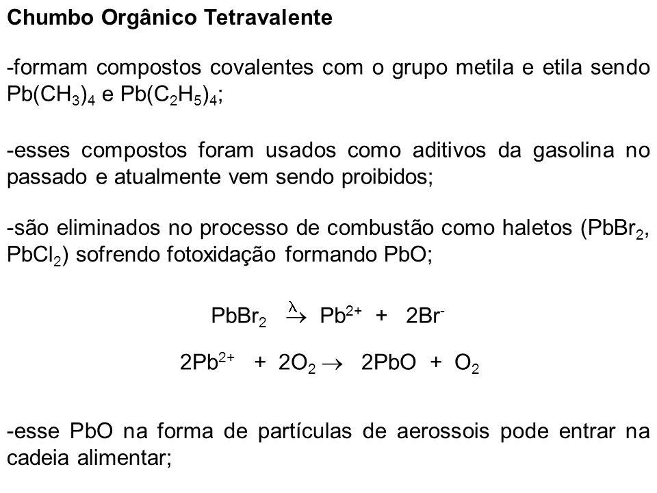 Chumbo Orgânico Tetravalente