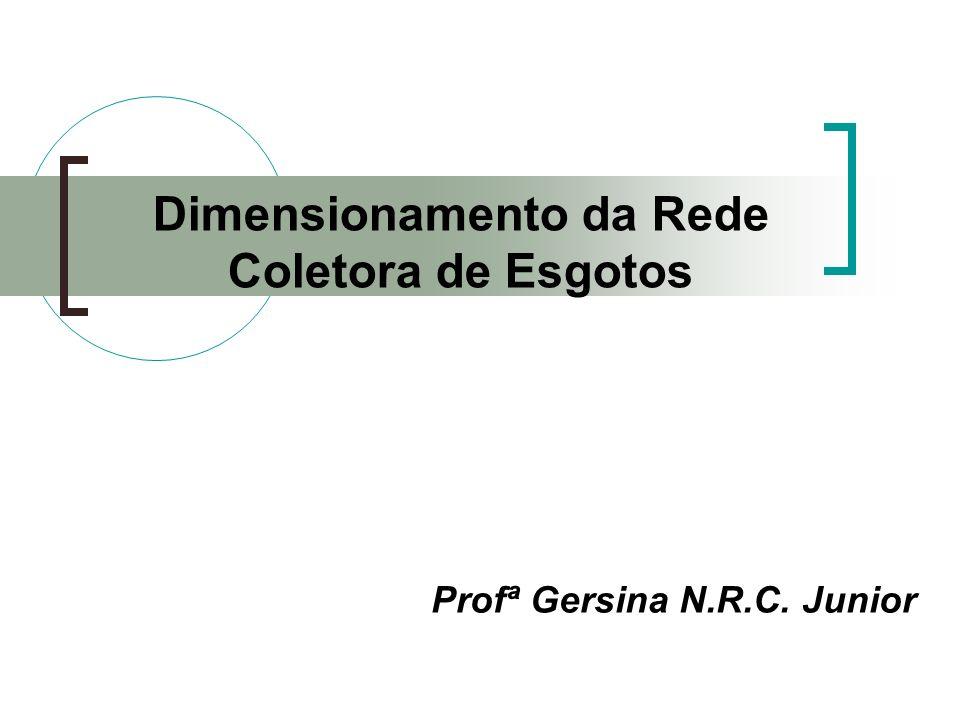 Profª Gersina N.R.C. Junior