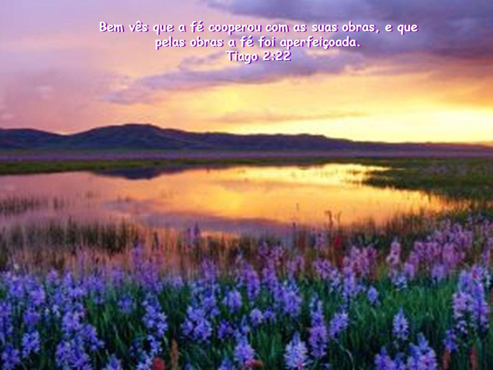Bem vês que a fé cooperou com as suas obras, e que pelas obras a fé foi aperfeiçoada.