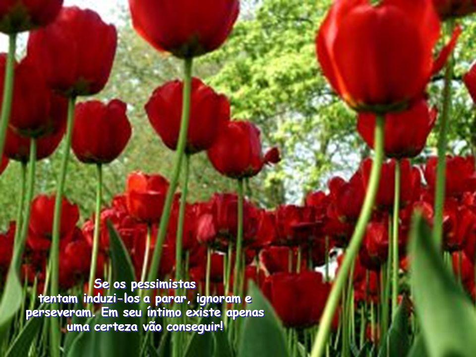 Se os pessimistas tentam induzi-los a parar, ignoram e perseveram