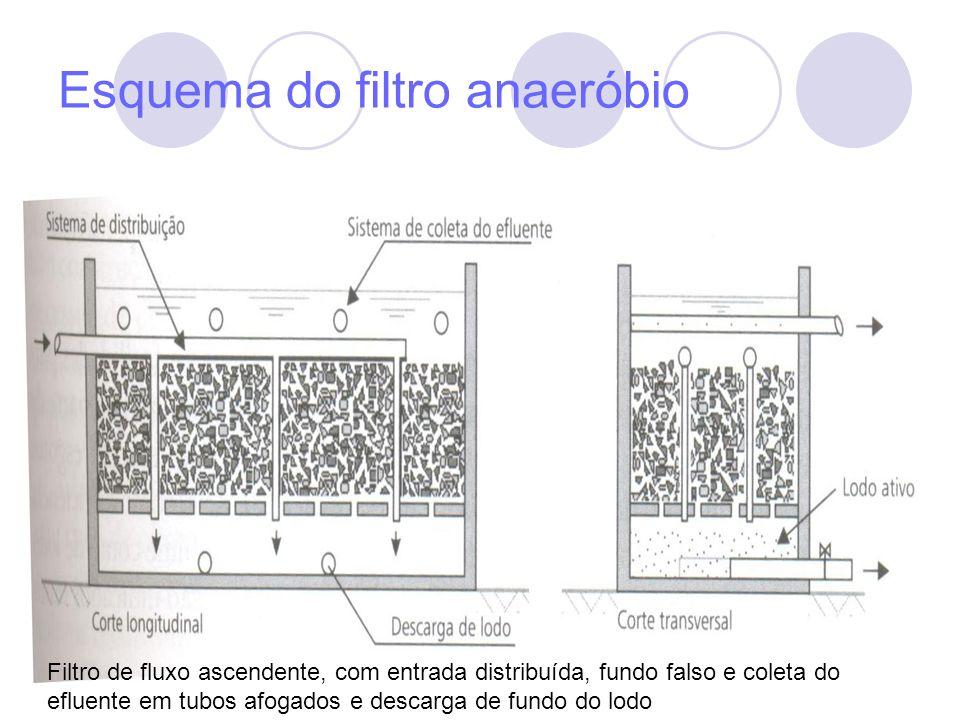 Esquema do filtro anaeróbio