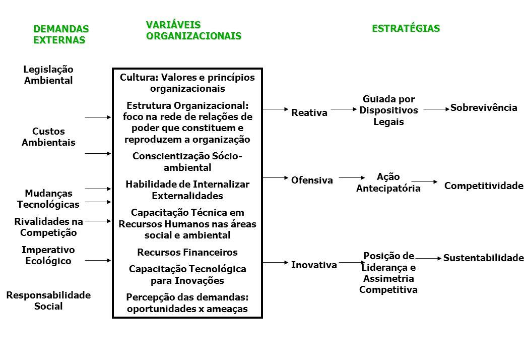 VARIÁVEIS ORGANIZACIONAIS DEMANDAS EXTERNAS ESTRATÉGIAS