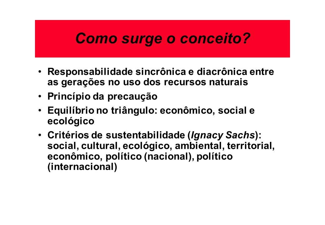 Como surge o conceito Responsabilidade sincrônica e diacrônica entre as gerações no uso dos recursos naturais.