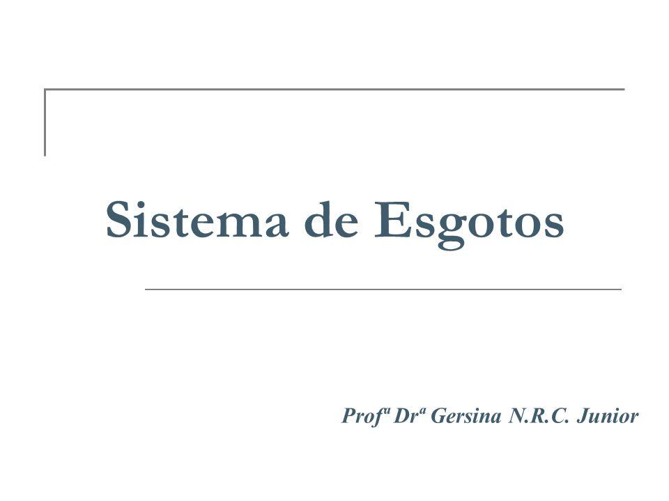 Profª Drª Gersina N.R.C. Junior