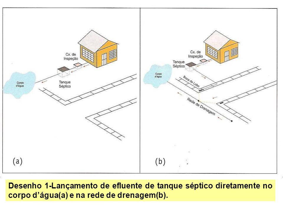 Desenho 1-Lançamento de efluente de tanque séptico diretamente no corpo d'água(a) e na rede de drenagem(b).