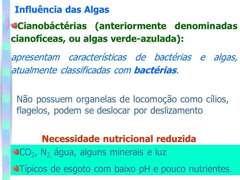 Necessidade nutricional reduzida