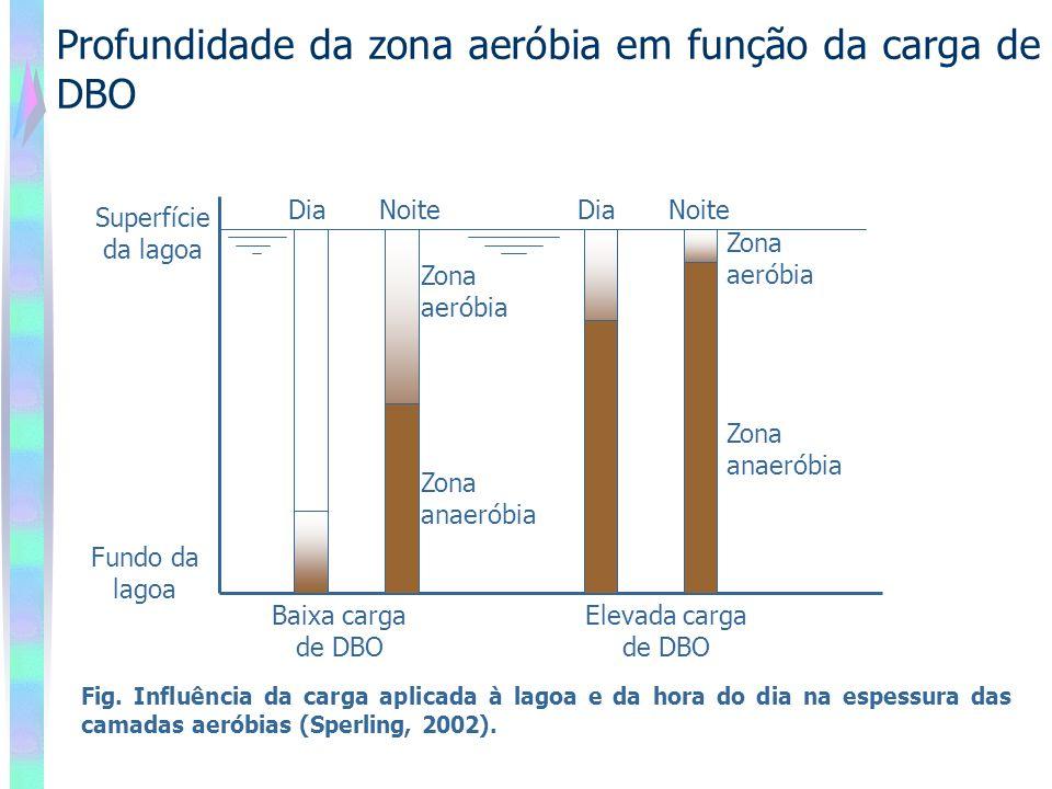 Profundidade da zona aeróbia em função da carga de DBO