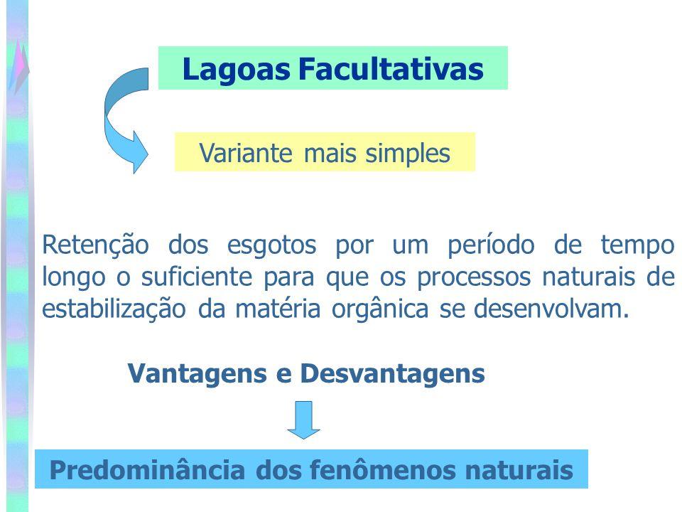 Predominância dos fenômenos naturais