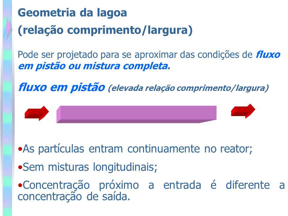(relação comprimento/largura)