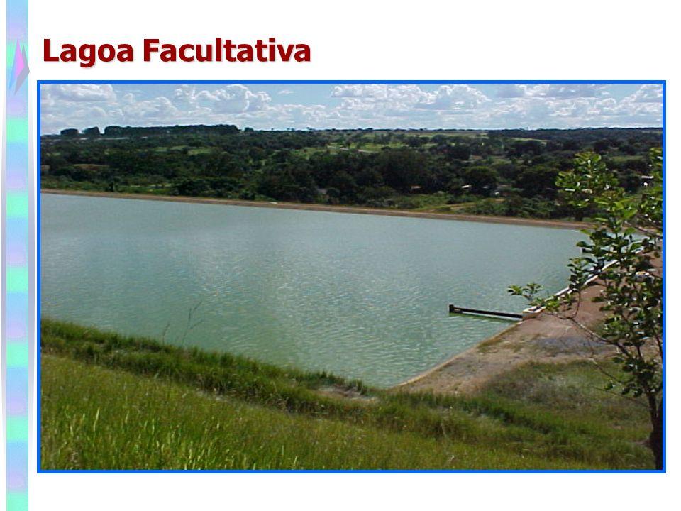 Lagoa Facultativa