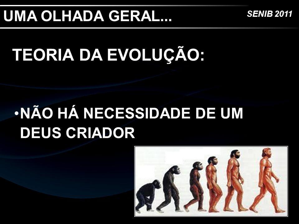 UMA OLHADA GERAL... TEORIA DA EVOLUÇÃO: NÃO HÁ NECESSIDADE DE UM DEUS CRIADOR