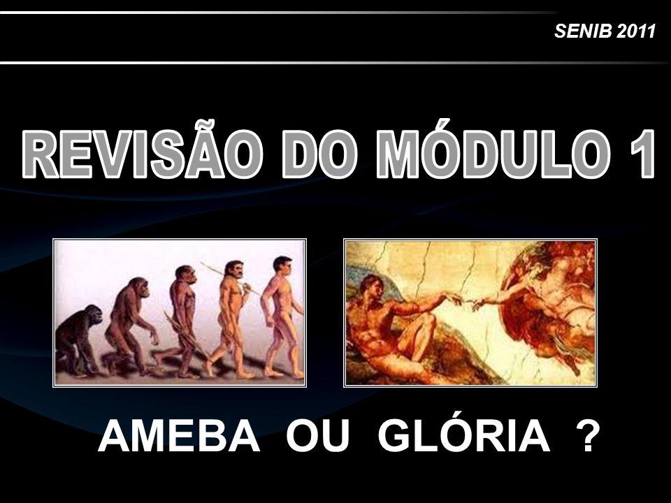 REVISÃO DO MÓDULO 1 AMEBA OU GLÓRIA