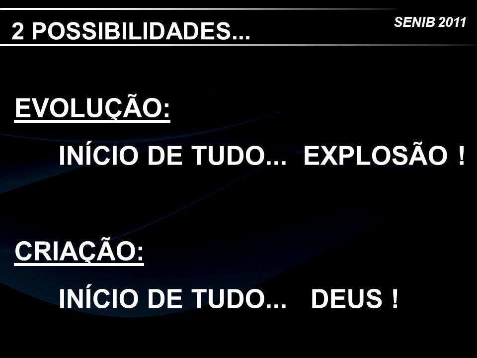 INÍCIO DE TUDO... EXPLOSÃO !