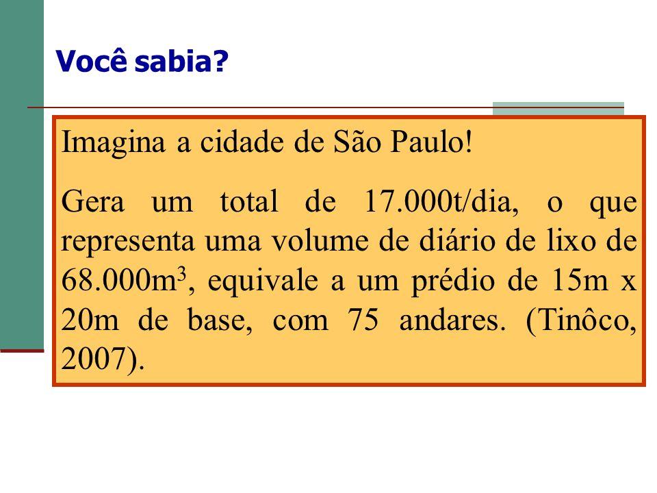 Imagina a cidade de São Paulo!