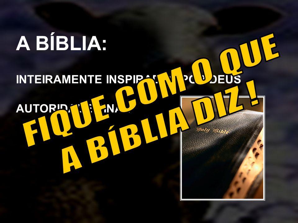 A BÍBLIA: FIQUE COM O QUE A BÍBLIA DIZ !