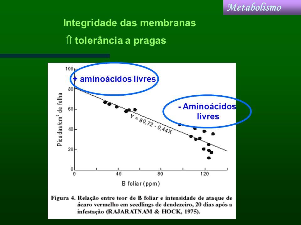 Metabolismo Integridade das membranas  tolerância a pragas