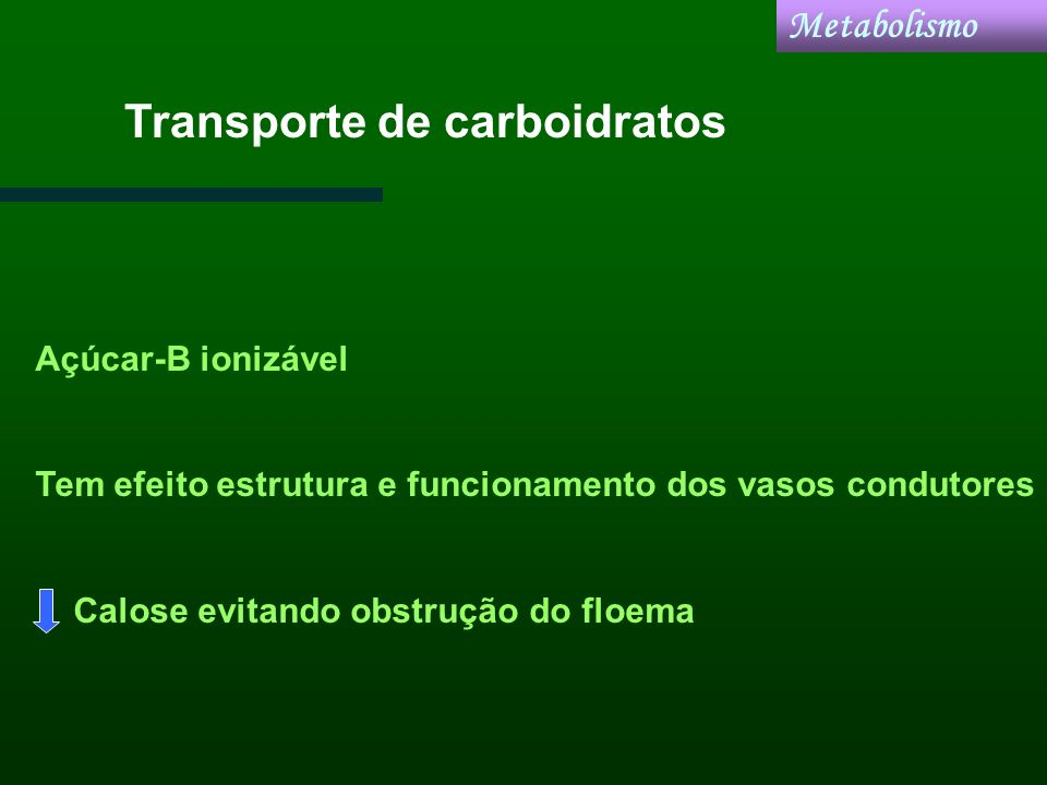 Transporte de carboidratos