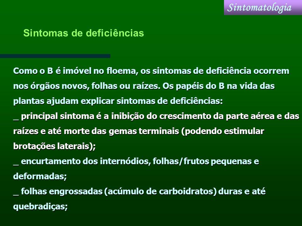 Sintomatologia Sintomas de deficiências
