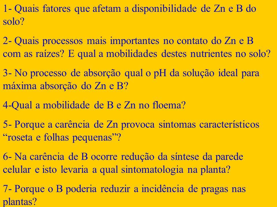 1- Quais fatores que afetam a disponibilidade de Zn e B do solo