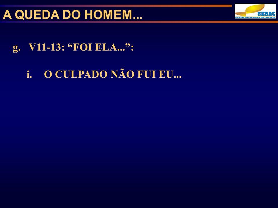 A QUEDA DO HOMEM... g. V11-13: FOI ELA... : O CULPADO NÃO FUI EU...