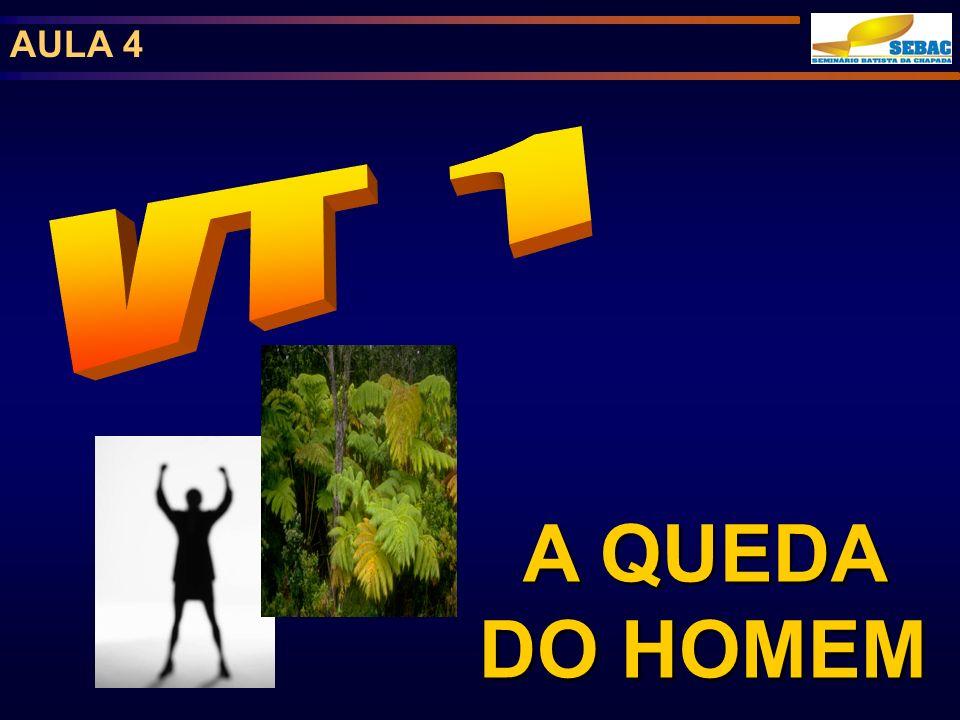 AULA 4 VT 1 A QUEDA DO HOMEM