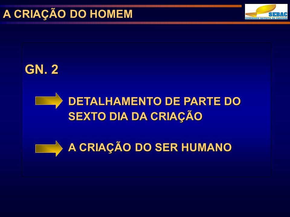 GN. 2 A CRIAÇÃO DO HOMEM DETALHAMENTO DE PARTE DO SEXTO DIA DA CRIAÇÃO
