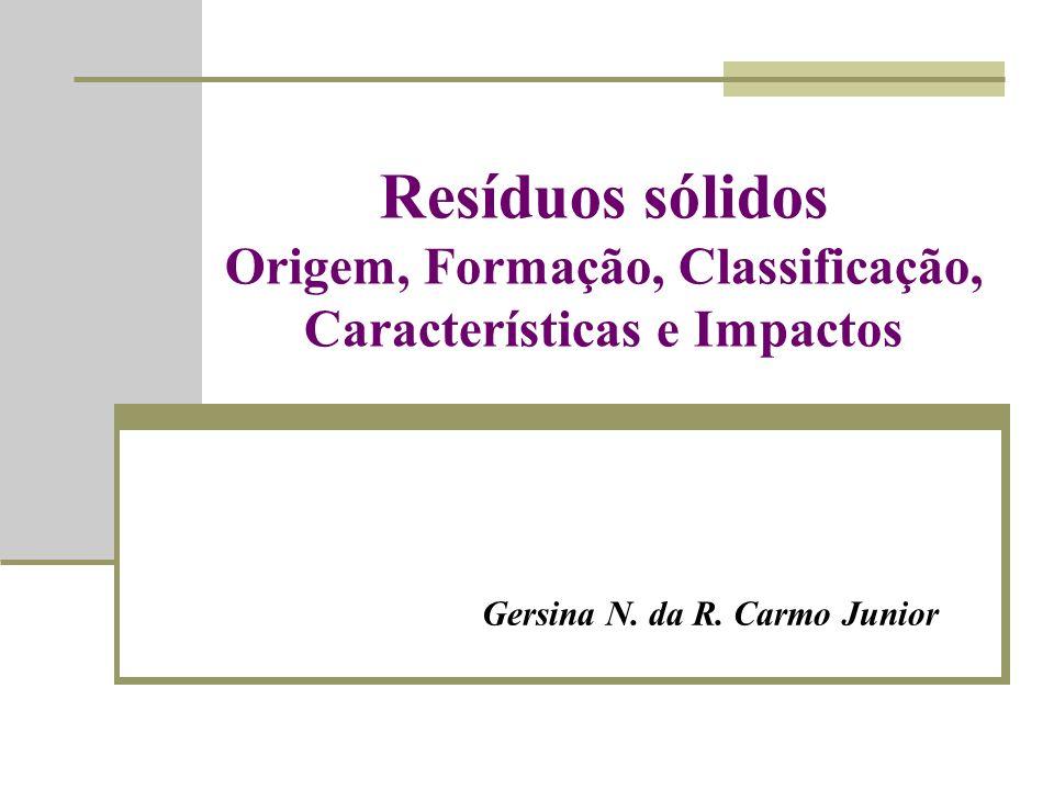 Gersina N. da R. Carmo Junior