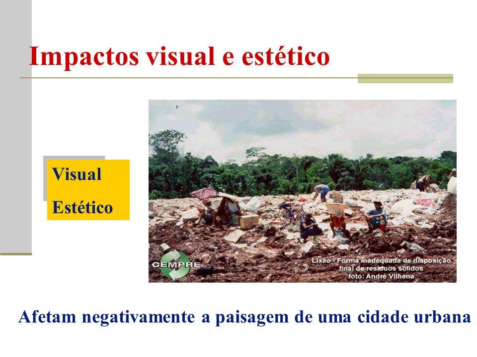 Impactos visual e estético