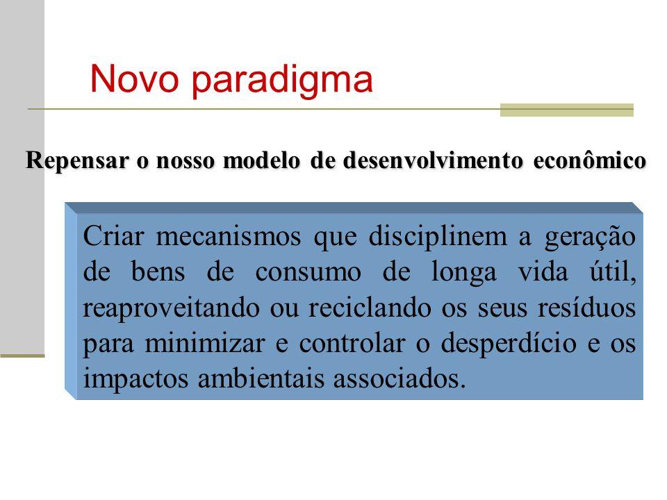 Novo paradigma Repensar o nosso modelo de desenvolvimento econômico.