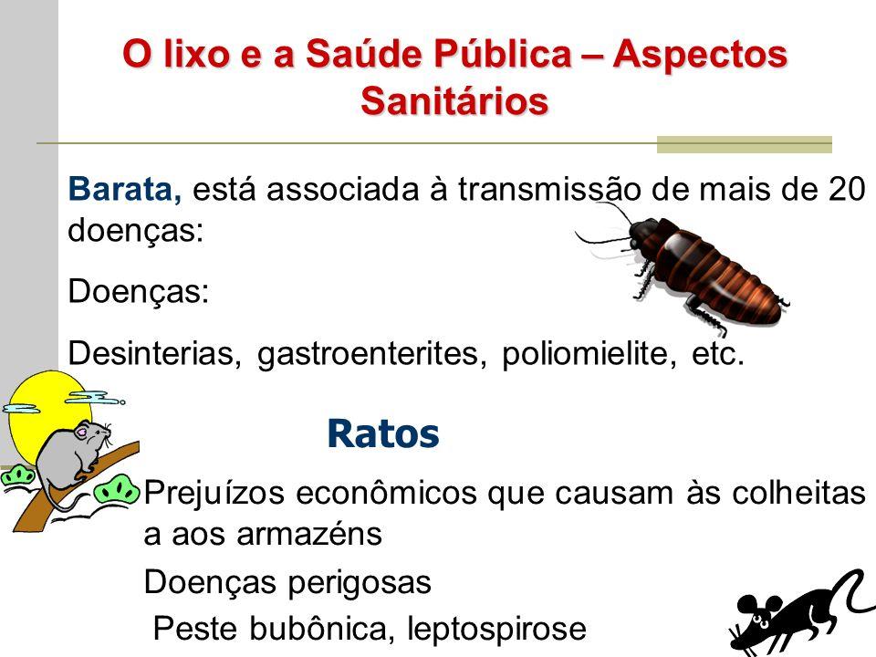 O lixo e a Saúde Pública – Aspectos Sanitários