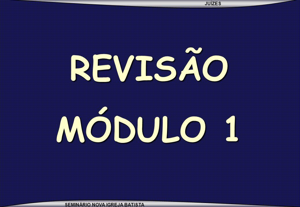 REVISÃO MÓDULO 1