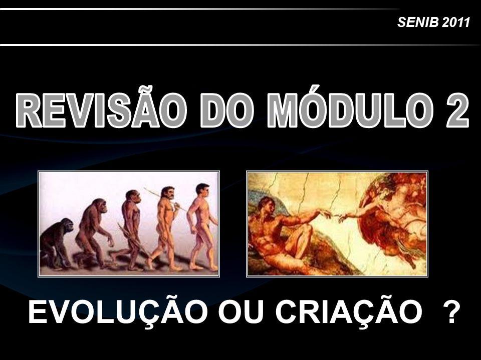 REVISÃO DO MÓDULO 2 EVOLUÇÃO OU CRIAÇÃO