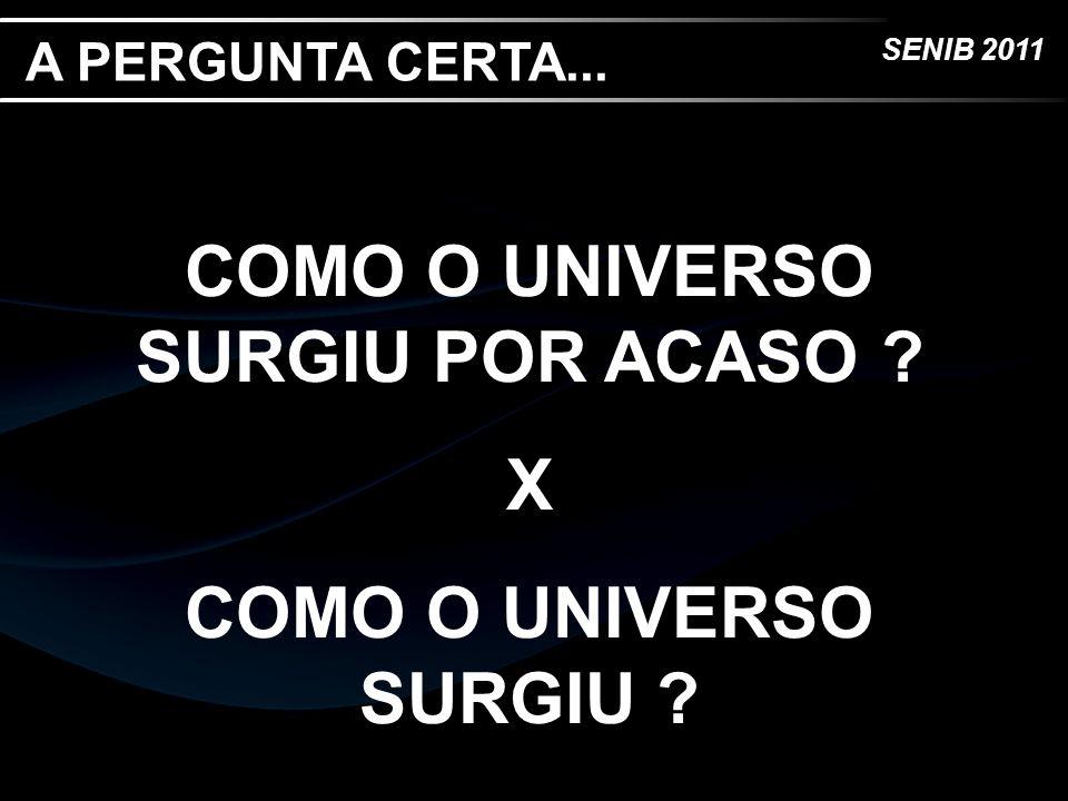 COMO O UNIVERSO SURGIU POR ACASO