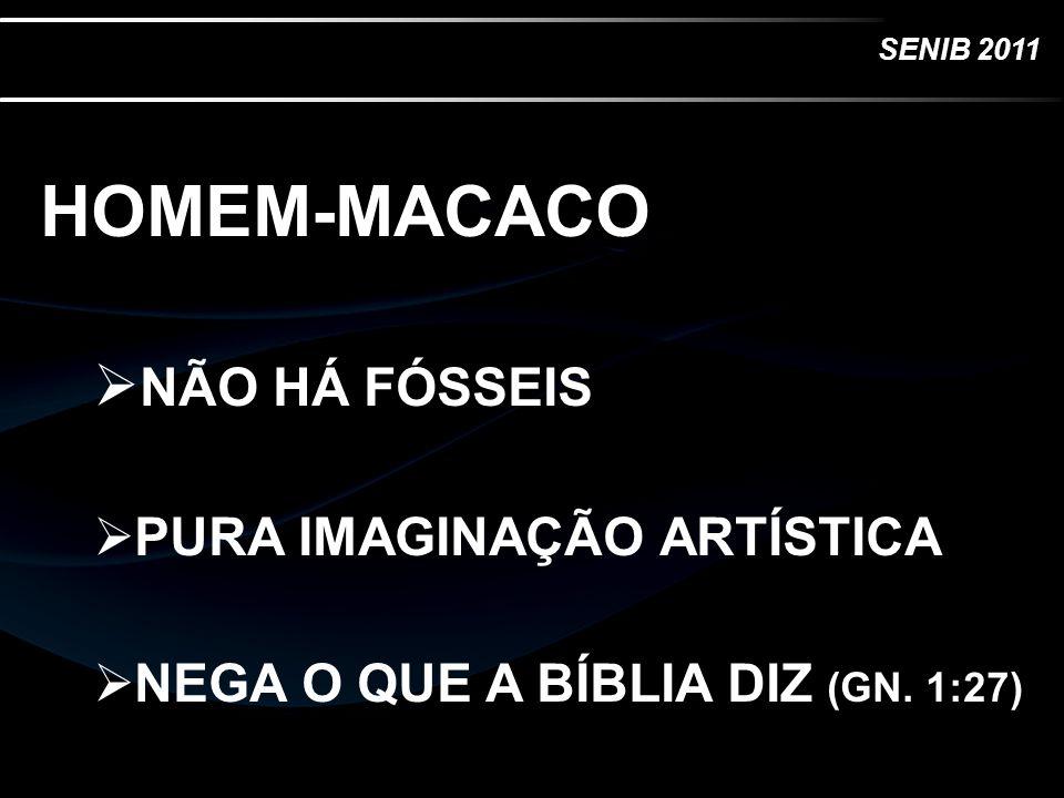 HOMEM-MACACO NÃO HÁ FÓSSEIS PURA IMAGINAÇÃO ARTÍSTICA