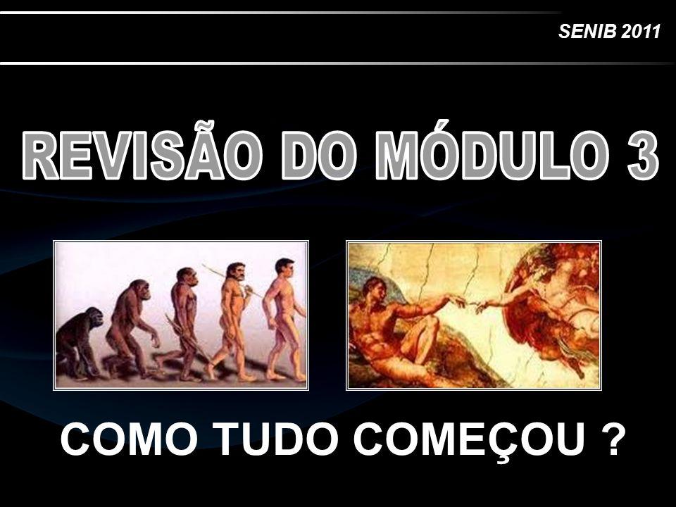 REVISÃO DO MÓDULO 3 COMO TUDO COMEÇOU