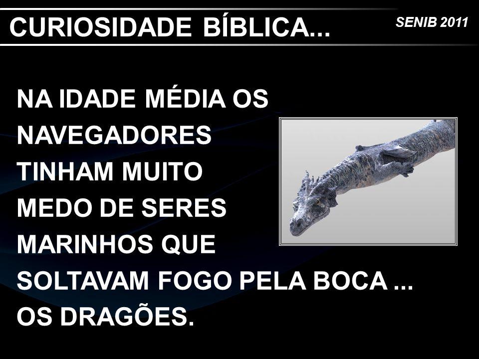 CURIOSIDADE BÍBLICA...